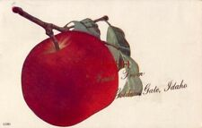 FRUIT FROM GOLDEN GATE, IDAHO 1912 big red apple