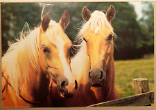 (PRL) 1988 CAVALLI CHEVAUX HORSES VINTAGE AFFICHE PRINT ART POSTER COLLECTION