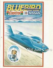 Vintage Nissan Bluebird, Donald Campbell, Australia Colored Brochure or Pamphlet
