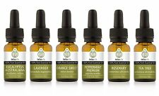Essential Oil Set 6 Pack 10 Ml Kit, Lot - 100% Pure, Therapeutic Grade Oils