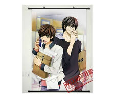Home Decor Japanese Poster Wall Scroll Sekai-ichi Hatsukoi Cosplay Art Anime
