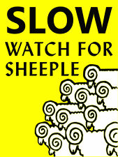"SLOW WATCH FOR SHEEPLE 2"" x 3"" Fridge MAGNET PREPPER POLITICAL HUMOR"