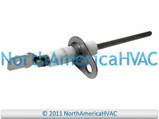 Luxaire York Gas Furnace Flame Sensor Rod 025-37499-000