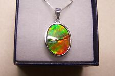 "AMMOLITE PENDANT GREAT COLORS 16X12mm  SET IN STERLING W/ 18"" S.S.CHAIN"