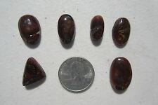 412  LOT OF 6  FIRE AGATE CABS.  DISCOUNT FIRE AGATE CABS FROM CLOSED ROCK SHOP