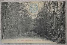 """CPA """" Forêt de Meudon - Sous bois près de la Patte d'Or"""