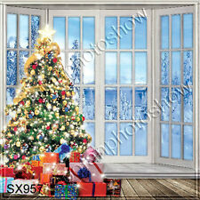 Christmas 10'x10' Computer-painted Scenic Photo Background Backdrop SX957B11