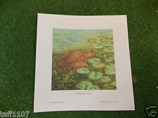 Fish Print  CARP  MIDSUMMERS MISSION 24 X 25  FISHING ANGLING