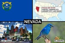 SOUVENIR FRIDGE MAGNET of THE STATE OF NEVADA USA