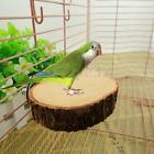 Round Wood Coin Parrot Bird Cage Perches Stand Platform Pet Budgie Hanging Toy