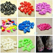 Hot 20pcs Durable Pet Cat Nail Claw Paws Caps Adhesive Glue Cover Protector+Glue