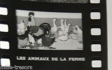 FILM Images Fixes documentaire Les ANIMAUX de la FERME - Fernand NATHAN