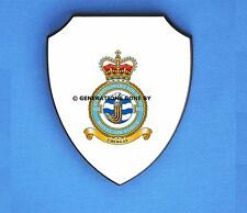 ROYAL AIR FORCE 902 EXPEDITIONARY SUPPORT WING WALL SHIELD (FULL COLOUR)