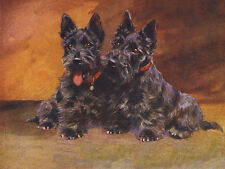 SCOTTISH TERRIER CHARMING SCOTTIE DOG GREETINGS NOTE CARD TWO CUTE SITTING DOGS