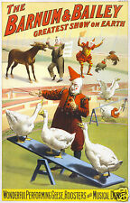 """Barnum & Bailey Circus Clowns Geese Musical Donkey Vintage Poster 12x8"""" Reprint"""