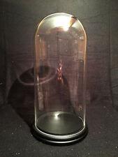 Superbe Globe, Cloche 40cm en verre épais pour curiosités, décoration, insectes!