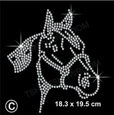 Strass / Diamante transfer HOTFIX FERRO DA CAVALLO Motif Appliqué in Cristallo Regalo