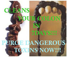 COLON CLEANSE*SUPER FLUSH*ALL ORGANIC HERBS*FLUSH POUNDS*LOSE WEIGHT*DETOX
