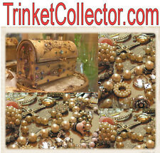 Trinket Collector .com Junk Drawer Auctions Trinkets Things Collectables Domain
