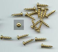 """BAG OF 250 NEW Bright Brass #6 x 5/8"""" Self Tapping Pan Head YOUNGDALE SCREWS"""