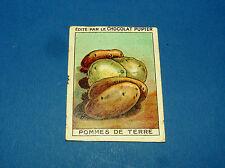 LES LEGUMES POMMES DE TERRE CHROMO CHOCOLAT PUPIER JOLIES IMAGES 1930