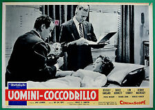 T27 FOTOBUSTA UOMINI COCCODRILLO BEVERLY GARLAND BRUCE BENNETT LON CHANEY KENNED