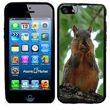 Squirrel Eating A Nut For Iphone 6 Case Cover By Atomic Market