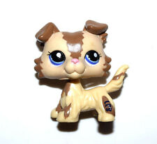 Littlest Pet Shop Animal Blue Eyes Cream Brown Dog Doll Figure Child Toy UK