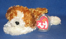 TY SAMPSON the DOG BEANIE BABY - MINT with MINT TAGS