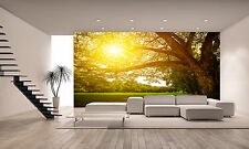 Nature Landscape and Sunset Wall  Mural Photo Wallpaper GIANT WALL DECOR