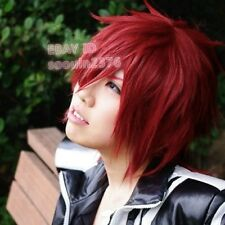 D.Gray Man Lavi Short Red Cosplay Stylish Fashion Hair Wig