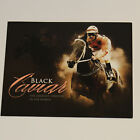 "BLACK CAVIAR ""The Greatest Sprinter in the World"" Souvenir Stamp Pack - NEW"