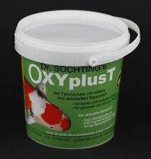 Söchting Oxyplus T - Sauerstoff- Tabletten für gesundes Teich- Wasser (1 x 1 kg)