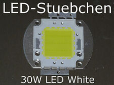 1x 30W High-Power LED Weiss Weiß