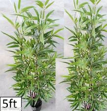 1 X Green leaf Bamboo Palm Tree Potted ARTIFICIAL Silk Plant Fake 5ft High 150cm