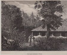 1879  --  NOUVELLE GUINEE   UNE MAISON HOLLANDAISE A TERNATE   3D838