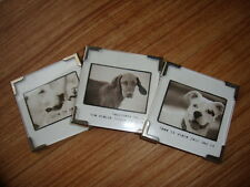 3 Natural Life Magnets Life is Good, Home is Where Your dog Is, Happiness Is...