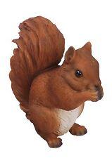 Vives Arts - animaux de la forêt vraie vie - écureuil roux debout