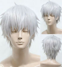Hot Sale Unisex Silvery White Wig short Straight Hair Cosplay anime Full Wigs