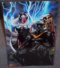 The Black Panther & Storm Glossy Print 11 x 17 In Hard Plastic Sleeve