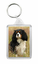 Cavalier King Charles Spaniel (Tri Colour) Dog Photo Keyring Keyfob Key Ring