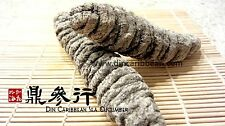 DinCaribbean Dried Sea Cucumber Mexicana Grade AA Extra Large (1LB)