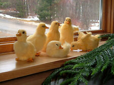 6 Realistic Easter BABY DUCKS PHOTO PROP Fake Fur REPLICAS Toy FREE SHIPPING US