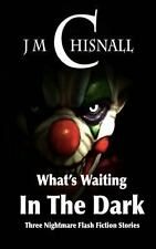What's Waiting in the Dark by J. Chisnall (2013, Paperback)