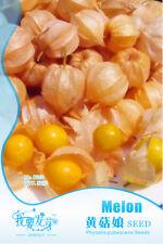 50pcs/bag Golden Berry Seeds Chinese Latern Fruit Seeds Home Garden Bonsai DIY