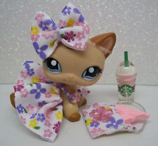 LPS CUSTOM SKIRT BOW NECKLACE PURSE CHOCOLATE BAR STARBUCKS ACCESSORIES ONLY