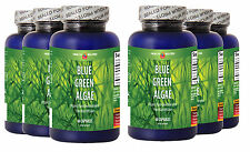 Blue Green Algae 500mg 360 Capsules From Klamath Lake (6 Bottles)