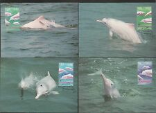 Hong Kong 1999 WWF maximum card set of 4 Dolphins