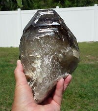 Rare Smoky Quartz Elestial SHOVEL FACE Crystal Point Ancient Water One of a Kind