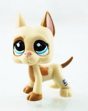 #1647 Littlest Pet Shop LPS Great Dane Dog Tan Cream Pink Ear Blue Eyes #ef5s7nm